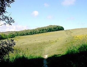 Worthing Downland Estate Wikipedia