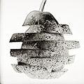 Pear Tree House (3047094858).jpg