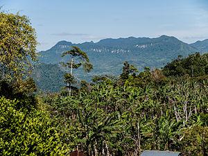 Municipalities of Nicaragua - Image: Penas Blancas, part of the Bosawas Reserve, Jinotega Department, Nicaragua