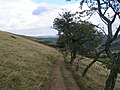 Permitted path above Woodhouse Farm - geograph.org.uk - 226261.jpg
