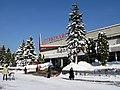 Pervomaisky-mall (North Izmailovo) - panoramio - Lodo.jpg