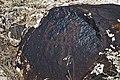 Petroglyphs, Voskehat - panoramio (2).jpg