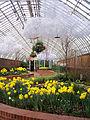 Phipps Conservatory Spring Flower Show 2015-03-13, Serpentine Room 01.jpg
