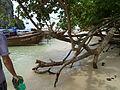 Phra Nang beach P1120071.JPG