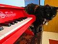 Piano de juguete Schoenhut (rojo) 18.jpg