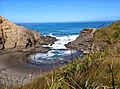 Piha 0772, New Zealand - panoramio (4).jpg
