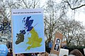 Placards at the People's Vote march, London, 23 March 2019 - 11.jpg