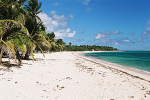Guadeloupe: Plage Feuillere