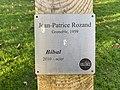 Plaque de la sculpture Bibal (Jean-Patrice Rozand) - Parc Jouvet (Valence).jpg