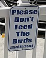 Please don't feed the birds, Sunset Beach, Treasure Island.jpg