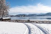 Poertschach Johannaweg winterlicher Park mit Reifenspuren 14012017 6066.jpg