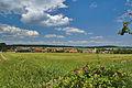 Pohled na Bukovou z jihozápadu, okres Prostějov.jpg