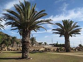 Rancho Palos Verdes, California