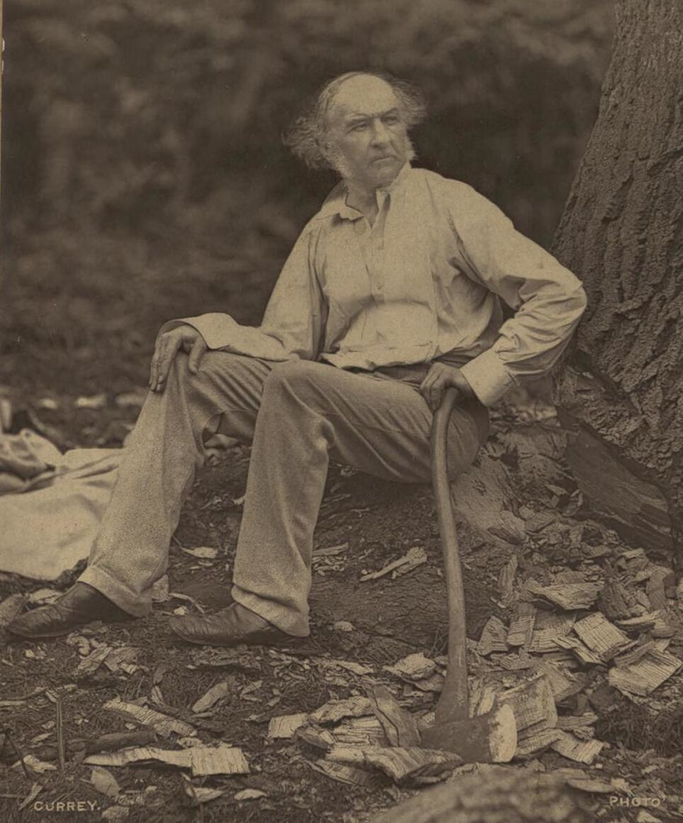 Portrait of Hawarden 1877 William Gladstone (4672759) (cropped)