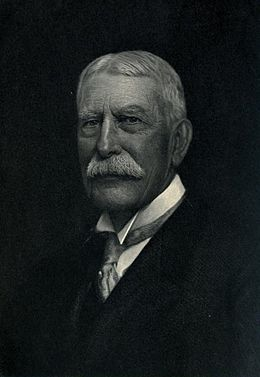 Portrait of Henry Morrison Flagler.jpg