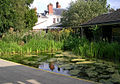 Preston Montford Field Centre - Pond - geograph.org.uk - 368245.jpg
