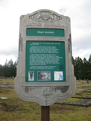 Albert Goodwin - Sign outside the Cumberland Municipal Cemetery erected by the Province of British Columbia offering a brief description of Goodwin's life and work.