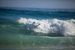 Pyramid Rock Body Surfing Competition 2015 150208-M-TT233-006.jpg