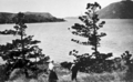 Queensland State Archives 1022 From the Heights of Lindeman Island looking towards Shaw Island c 1931.png