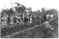 Queensland State Archives 3047 Fettlers constructing railway track by hand with pick and shovels c 1880.png