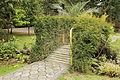 Quitos botaniska trädgård-IMG 9164.JPG