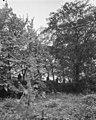 R.K.Pastorie, tuin - 's-Gravenhage - 20085577 - RCE.jpg