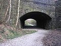 Railway Bridge, Brinscall - geograph.org.uk - 525721.jpg