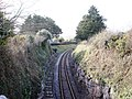 Railway Line , near Golf Course, Churston - geograph.org.uk - 369919.jpg