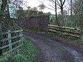 Railway bridge near Idzholm - geograph.org.uk - 606655.jpg