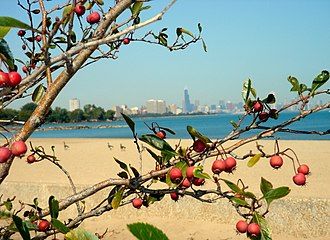 South Shore, Chicago - Rainbow Beach along the shore of Lake Michigan.