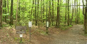 Rainbow Falls Trail - The Rainbow Falls Trail trailhead