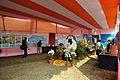 Ramakrishna Fair & Exhibition - Narendrapur - Kolkata 2012-01-21 8447.JPG