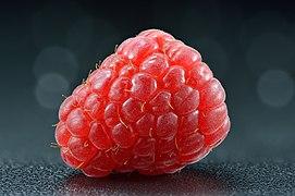Raspberry - whole (Rubus idaeus).jpg