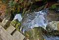 Rešovské vodopády na podzim 13.jpg