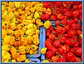 Red and yellow adjuma peppers.jpg