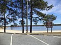 Reed Bingham State Park beach from parking lot.JPG