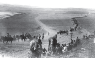 Seyfo Assyrian genocide (1914–1924)