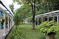 Rio de janeiro, jardim botanico, vivaio 01.JPG
