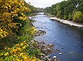 River Dee in Banchory in Autumn - geograph.org.uk - 583823.jpg