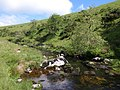 River Erme - geograph.org.uk - 1364200.jpg