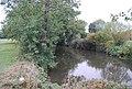 River Medway - geograph.org.uk - 1543294.jpg