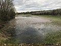 Rivière de Sougère-en-Puisaye en mars 2018 - 3.JPG
