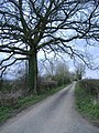 Road to Nibley Green - geograph.org.uk - 367221.jpg
