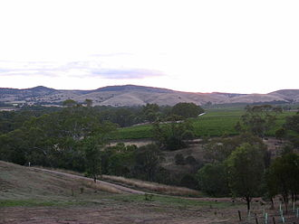 Barossa Valley (wine) - The foothills of the Barossa Ranges offers macroclimates that are quite distinct from the flatter valley floor vineyards featured in lead picture above.