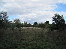 Rowley Lodge Field 2.JPG