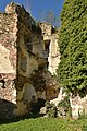 Ruine Hohenegg 09.jpg