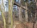 Ruinen 2.Weltkrieg bei Rehagen - panoramio (1).jpg