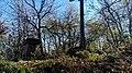 Ruiny Sanktuarium Matki Bożej Bolesnej z 1743 r., Kapliczna Góra 2018.10.31 (04).jpg