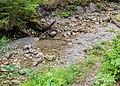 Ruisseau de la Diomaz.jpg
