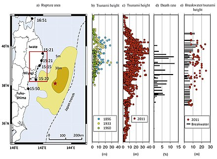 7d Gewicht Preis Preis Ecuador Erdbeben zu verlieren